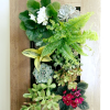 living-frame-project-mixed-flowers