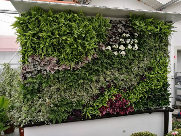 Green wall system project